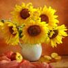 flower2 (100x100, 4Kb)
