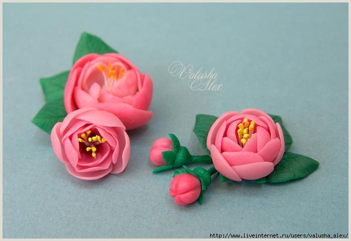 Цветы из тайской глины/1338792799_DSC01777_sm (700x482, 188Kb)