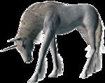 Превью Единороги на прозрачном слое (23) (300x236, 85Kb)