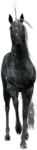 Превью Единороги на прозрачном слое (76) (74x300, 41Kb)