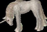 Превью Единороги на прозрачном слое (81) (300x206, 79Kb)
