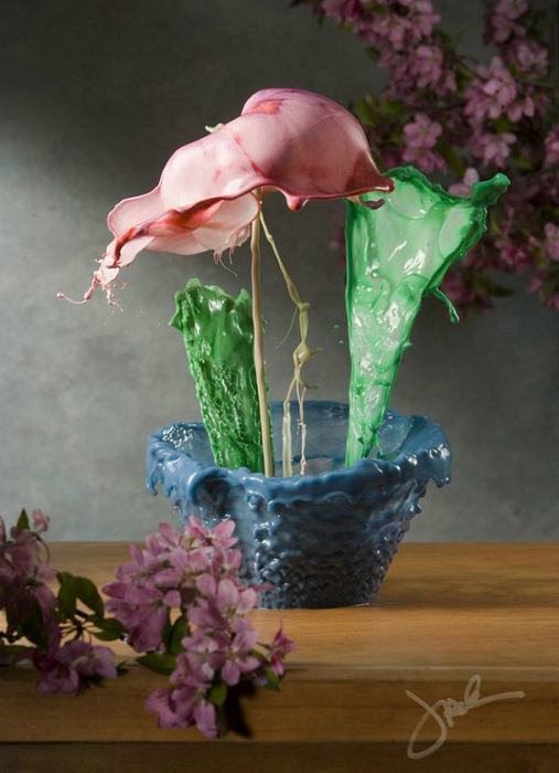 необычные цветы Jack Long 3 (507x700, 305Kb)