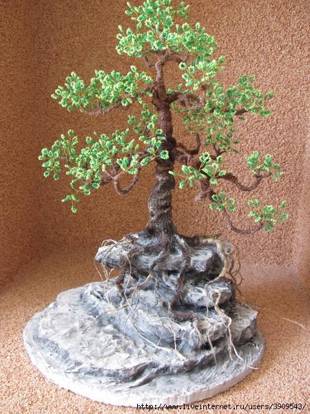 Далее ствол корни и ветки дерева