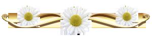 aramat_8 (300x82, 22Kb)