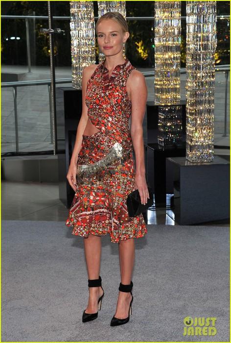 kate-bosworth-cfda-fashion-awards-2012-05 (472x700, 126Kb)
