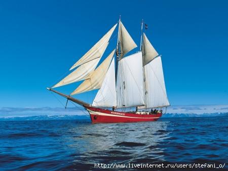 купить кораблик для завоза прикормки в москве
