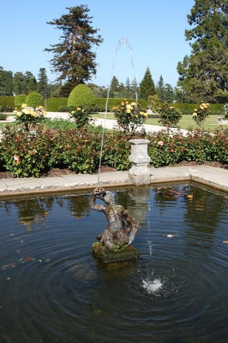 Powerscourt Gardens -Сад Пауэрскоурт . 86518