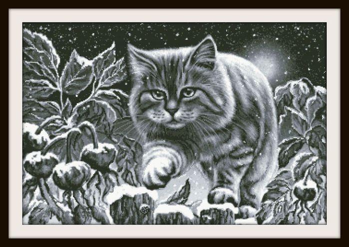 снежный котик (700x496, 75Kb)