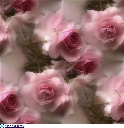 """схема"""" розовые розы"""" - Самое"""