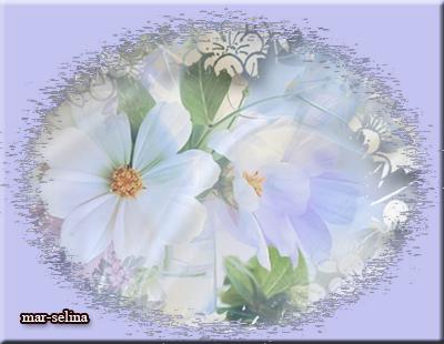Нежные-цветы (400x310, 166Kb)