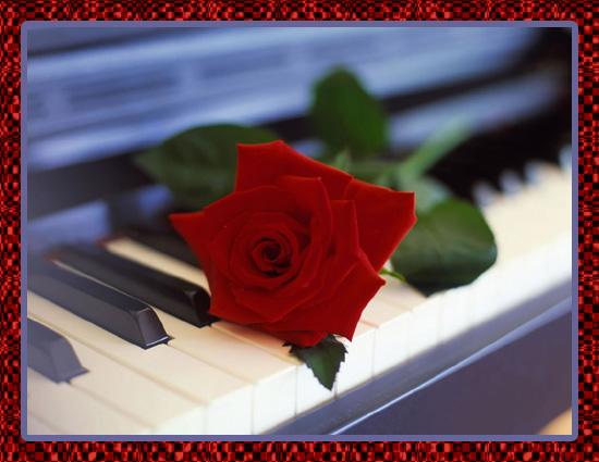 роза-и-рояль (550x425, 87Kb)