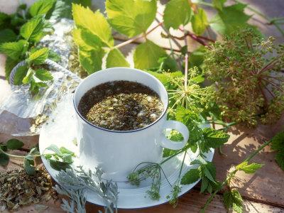 чай лечебный (400x300, 51Kb)