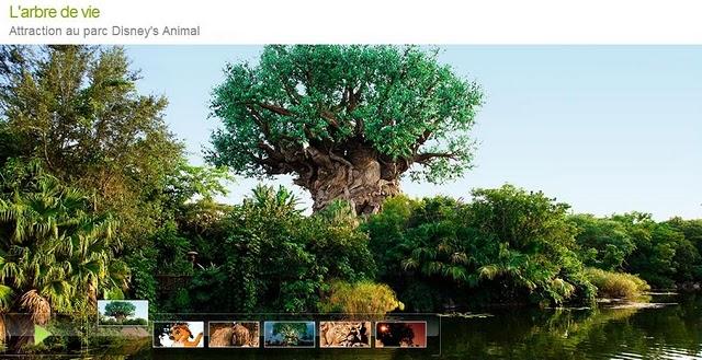 arbre_11 (640x329, 87Kb)