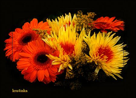 ЦветыЖелт (450x327, 246Kb)