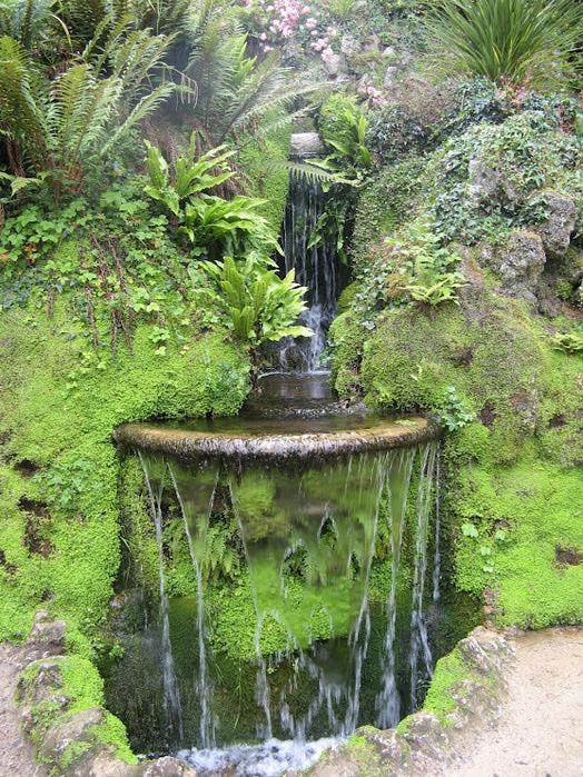 Powerscourt Gardens -Сад Пауэрскоурт . 21129