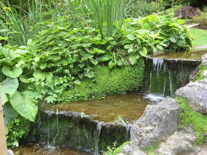 Powerscourt Gardens -Сад Пауэрскоурт . 32318