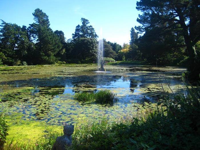 Powerscourt Gardens -Сад Пауэрскоурт . 38392