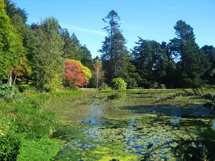 Powerscourt Gardens -Сад Пауэрскоурт . 89884