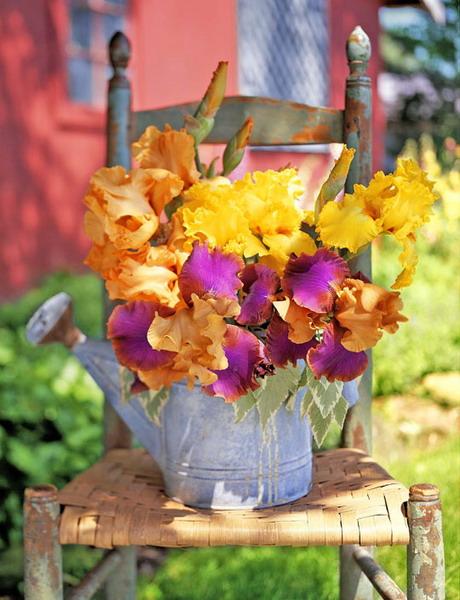 vintage-garden-pots1-2 (460x600, 90Kb)