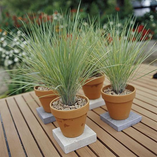vintage-garden-pots2-6 (540x540, 110Kb)