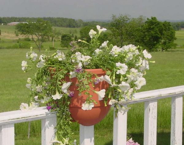 vintage-garden-pots4-6 (600x475, 95Kb)