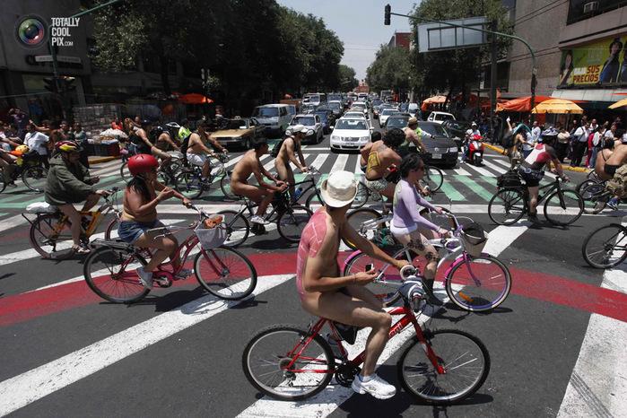 голые велосипедисты фото нудистов 10 (700x466, 177Kb)