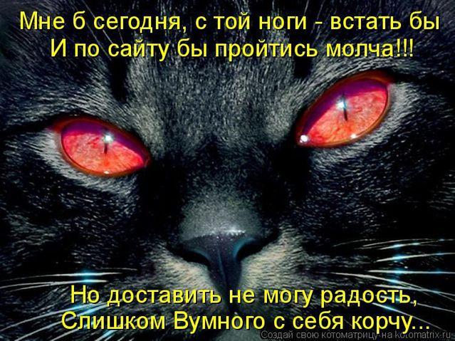 normal_humor_2697_20091028_1932260886 (639x479, 84Kb)