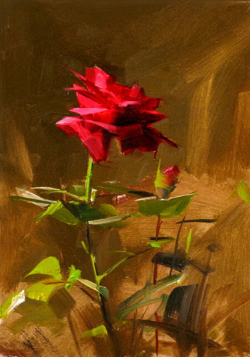 Red rose study 2 (490x700, 405Kb)