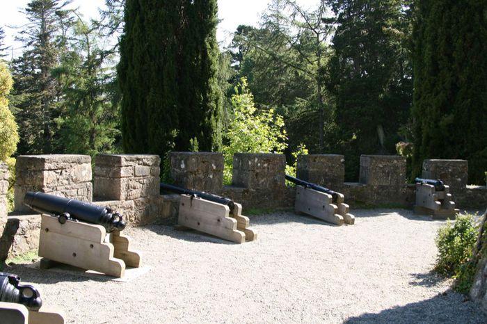 Powerscourt Gardens -Сад Пауэрскоурт . 26964