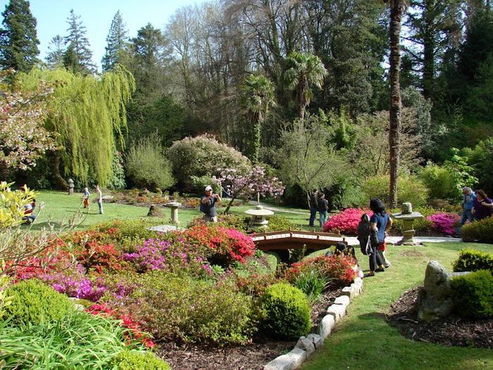 Powerscourt Gardens -Сад Пауэрскоурт . 60500