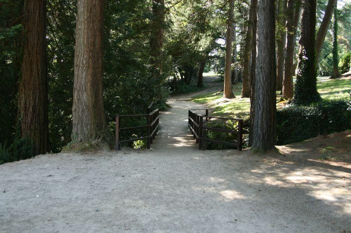 Powerscourt Gardens -Сад Пауэрскоурт . 88841