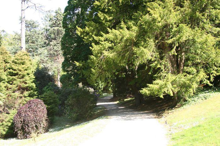 Powerscourt Gardens -Сад Пауэрскоурт . 44981