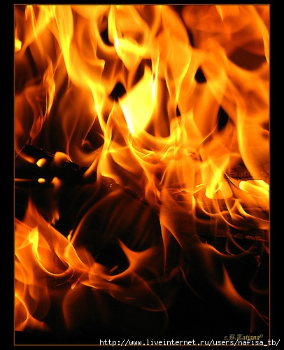 огонь (406x500, 139Kb)