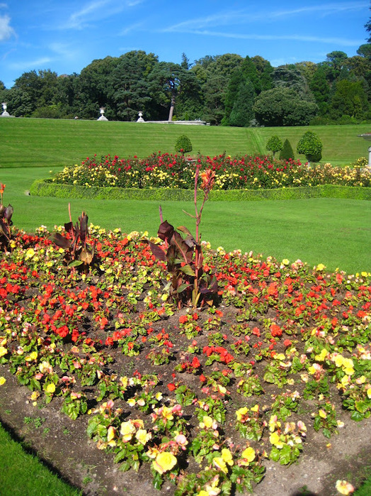Powerscourt Gardens -Сад Пауэрскоурт . 98762