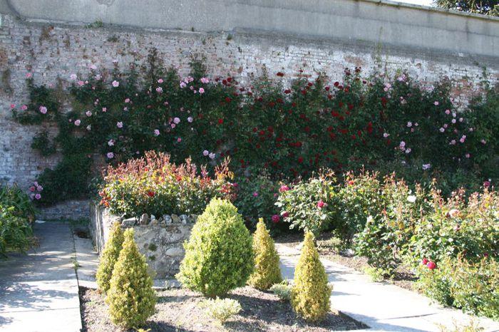 Powerscourt Gardens -Сад Пауэрскоурт . 64088