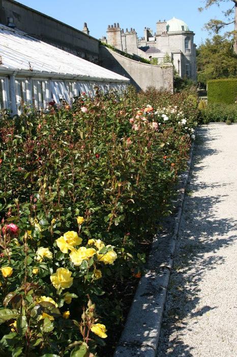 Powerscourt Gardens -Сад Пауэрскоурт . 95251