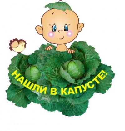 4497432_kapysta_1_gif (400x419, 38Kb)