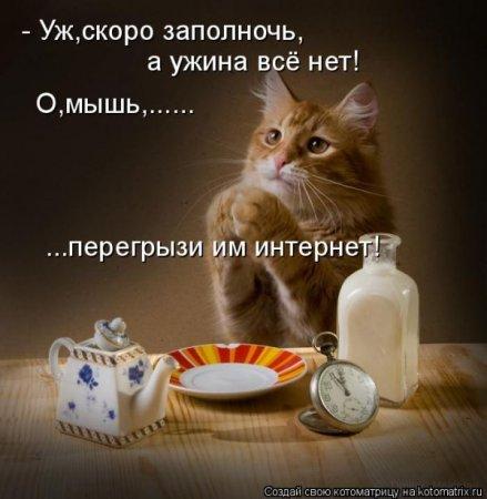 http://img1.liveinternet.ru/images/attach/c/5/88/294/88294633_22.jpg
