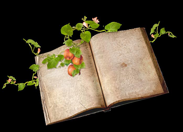 snackpackgu_June_book1 (700x506, 385Kb)