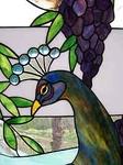 Превью peacock-head (200x267, 36Kb)