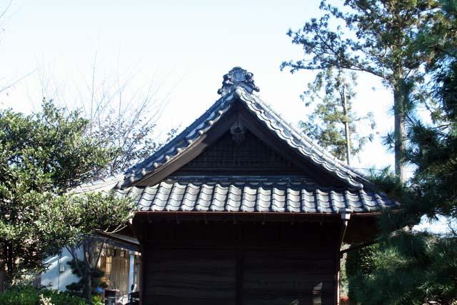 деревья японии1 (640x427, 102Kb)