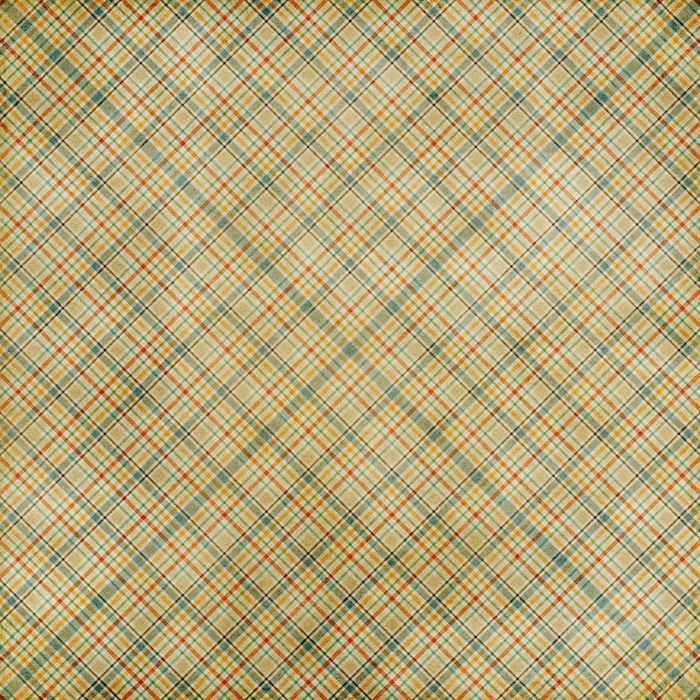ShabbyPrincess_Plentiful_Paper_Plaid (700x700, 536Kb)