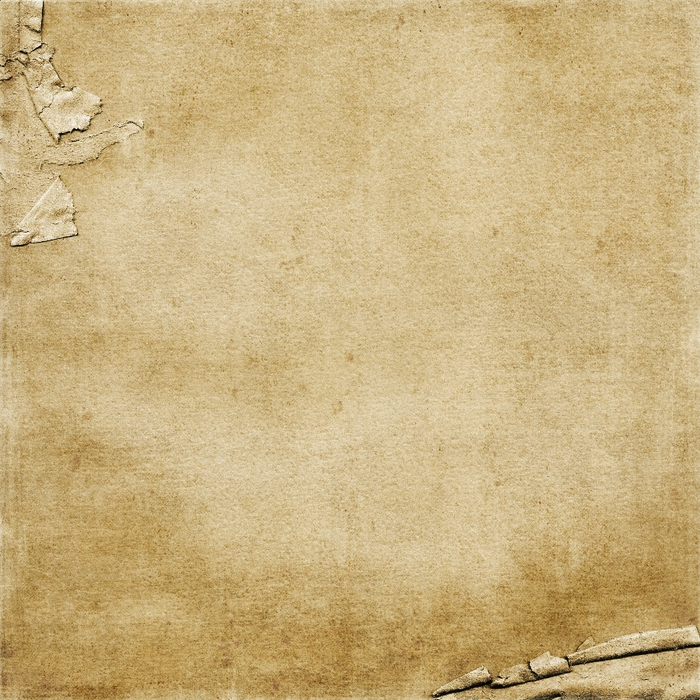 SP_HarvestSpice_Paper_Natural (700x700, 442Kb)