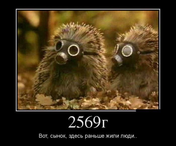 1340175632_0-11 (700x581, 46Kb)