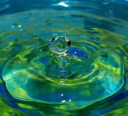 Первые сведения о влиянии магнитных полей на биологические свойства воды были получены еще в XVIII веке женевским...