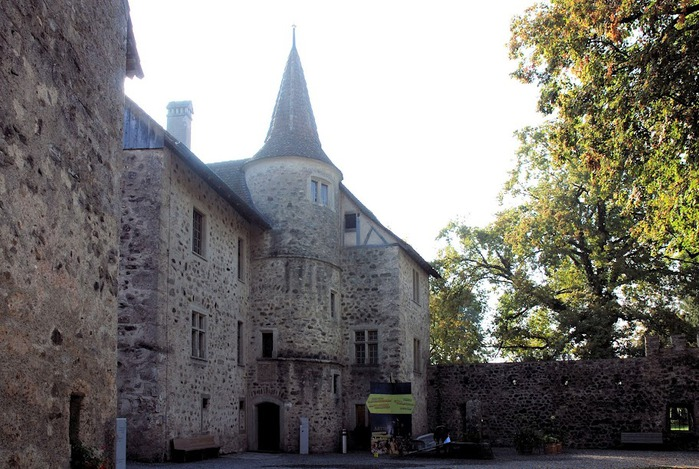 Замок Хальвиль (Schloss Hallwyl) 37219