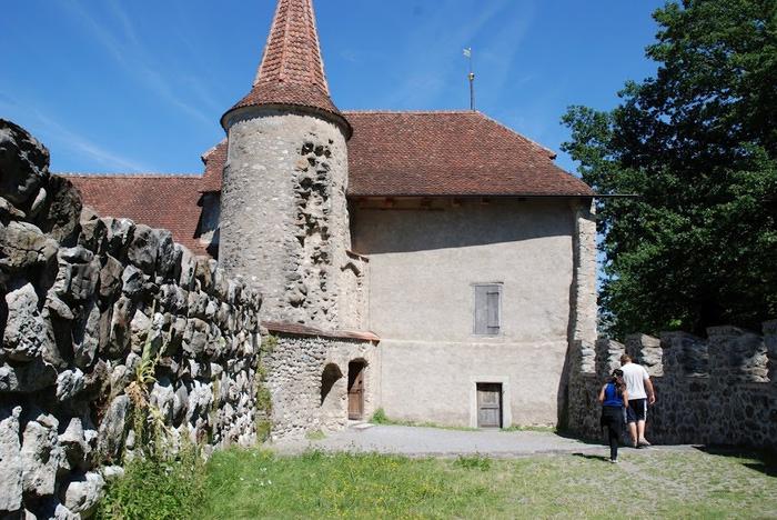 Замок Хальвиль (Schloss Hallwyl) 82032