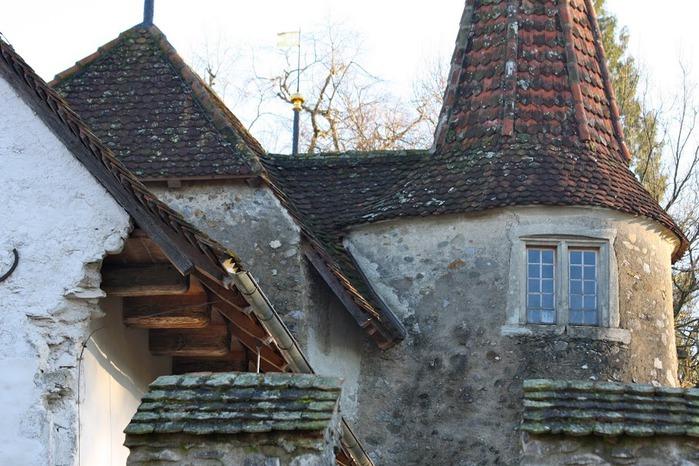 Замок Хальвиль (Schloss Hallwyl) 34559