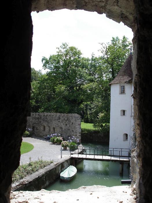 Замок Хальвиль (Schloss Hallwyl) 45045