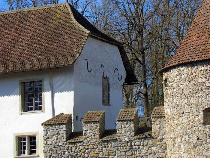 Замок Хальвиль (Schloss Hallwyl) 44082